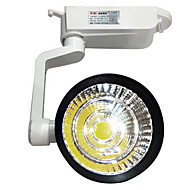 20w 2000lm 3000K / 4000K / 6000K cob geleid spoor licht high power zoeklicht spotlight voor winkel (ac110-265v)