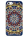 National Wind Pattern Hard Glue Case for iPhone 5/5S