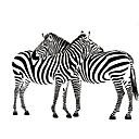 hesapli Küpeler-Hayvanlar 3D Duvar Etiketler Uçak Duvar Çıkartmaları Dekoratif Duvar Çıkartmaları, Vinil Ev dekorasyonu Duvar Çıkartması Duvar