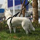 preiswerte Bekleidung & Accessoires für Hunde-Katze / Hund Geschirre Regolabile / Einziehbar / Traning / Sicherheit Polizei / Militär Echtleder Schwarz