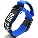 preiswerte Hundespielsachen-Haustierkragen Hund speziell verstellbar