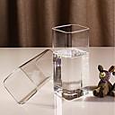 abordables Botellas de Agua-Vasos vidrio Tazas de Té / Vidrio Don novio / Regalo novia 2pcs