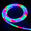 abordables Luces LED de Doble Pin-Brelong llevó la luz impermeable de neón flexible de colores con 5m 1x2cm 220v regulaciones europeas