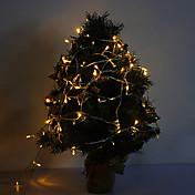 Luz conducida de la luz blanca caliente de 10m 6w 100-led 420lm para las decoraciones con 8 modos de visualización (220v)