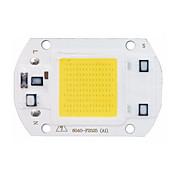 LED de alta potencia chip de mazorca 30w 110v 220v de entrada inteligente IC para bricolaje llevó la viruta luz de inundación (1 pieza)