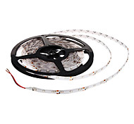 Waterproof 5M 300x3528 SMD Blue Light LED Strip Lamp (12V) High Quality