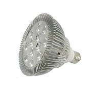 E26/E27 LED Spotlight PAR38 12 leds Warm White Natural White Dimmable AC 100-240