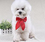 Недорогие -Собака пояс/Бабочка Одежда для собак Очаровательный Свадьба Бант Черный Красный Винный Костюм Для домашних животных