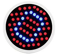 cheap -E27 2.6W 500LM 40Red and 20Blue SMD 2835 LED Bulbs for Flowering Plant Hydroponic System(85-265V)