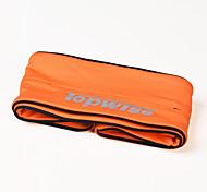 Поясные сумки Пояс Чехол для Велосипедный спорт/Велоспорт Бег Спортивные сумки Многофункциональный Сумка для бега Iphone 6/IPhone