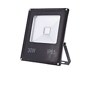 30W Warm Cool White IP65 Led Flood Light Waterproof Outdoor Wall Lamp Projectors(85-265V)