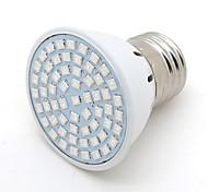 2W E26/E27 LED Grow Lights G50 60 SMD 2835 200 lm Blue red+blue K Decorative AC 220-240 V