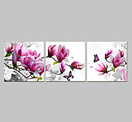 Prints Poster Purple Pink Blue Flower Art  Home Decorative  Pictures Print On Canvas  3pcs/set (Without Frame)