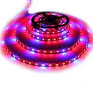Недорогие -150-250 lm Растущие габаритные огни 300 светодиоды SMD 5050 Синий Красный DC 12V