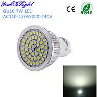 お買い得  LED スポットライト-YouOKLight 600 lm GU10 LEDスポットライト A50 48 LEDの SMD 2835 装飾用 クールホワイト AC 110〜130V AC 220-240V
