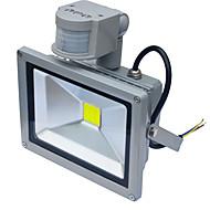 LED フラッドライト