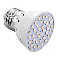 abordables Luces de Crecimiento-YWXLIGHT® 150-250lm E26 / E27 Growing Light Bulb 36 Cuentas LED SMD 2835 Azul Rojo 220V 110V