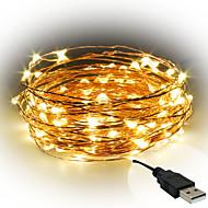 3W 스트링 조명 300 lm <5V V 10 m 100 LED가 웜 화이트 화이트 레드 옐로 블루 그린 퍼플 핑크 멀티 색상