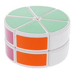 halpa Arvoituskuutio-DS-88 Sylinterin muotoinen kaksikerroksinen Aivojumppa Magic-Cube IQ Complete Kit (valkoinen)