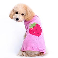 Koira Neulepaidat Koiran vaatteet Sievä Hedelmä Pinkki Asu Lemmikit