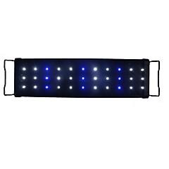 ieftine -Acvarii Decorațiune pentru Acvariu Iluminat LED Alb Albastru Eonomisire Energie Lampa cu LED 220V