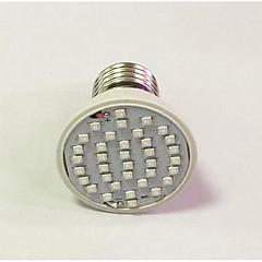 E26/E27 LED Aufzuchtlampen 36 260-312 lm Rot Blau K AC 85-265 V