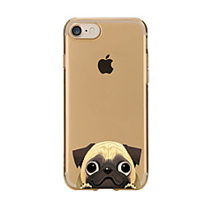 tanie Etui do iPhone 5S / SE-Na Przezroczyste Wzór Kılıf Etui na tył Kılıf Pies Miękkie TPU na AppleiPhone 7 Plus iPhone 7 iPhone 6s Plus/6 Plus iPhone 6s/6 iPhone