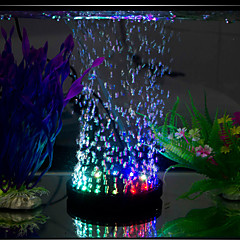 abordables Iluminación de Acuario-Acuarios Iluminación LED Multicolor Ahorro de Energía Silencioso Lámpara led 220V