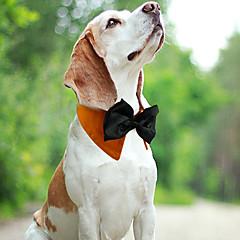 お買い得  犬用品-ネコ 犬 カラー 調整可能 / 引き込み式 高通気性 蝶結び ファブリック ホワイト オレンジ グリーン