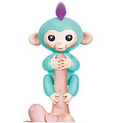 Maimuţă Animale toate vârstele