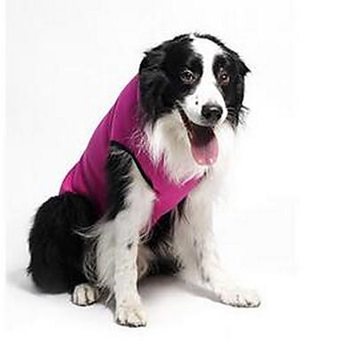 Pies Płaszcze Ubrania dla psów Codzienne Sportowe Gwiazdki Fuchsia Kostium Dla zwierząt domowych
