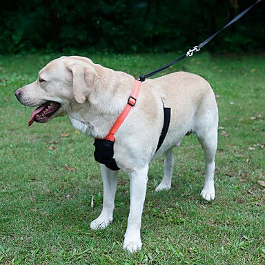 Kat Hond harnassen Lijnen Reflecterend draagbaar Ademend Vouwbaar Veiligheid Verstelbaar Effen Nylon Zwart Oranje