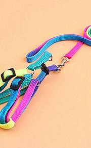 Kat Hond harnassen Lijnen draagbaar Ademend Vouwbaar Veiligheid Verstelbaar Kleurenblok Regenboog Nylon Regenboog
