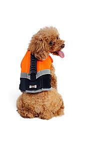 Hund Schwimmweste Hundekleidung Beiläufig / sportlich Solide Orange Grün Kostüm Für Haustiere