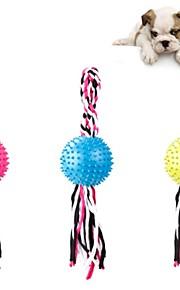 Hund Hundleksak Husdjursleksaker Interaktiva leksaker Söt Slapp form Cotton För husdjur