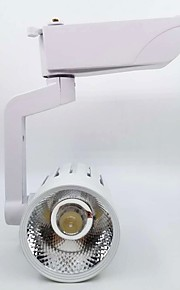 1szt 20W 1 Diody LED Łatwa instalacja Oświelenie szynowe Ciepła biel Zimna biel Naturalna biel AC 86-220V