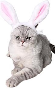 Kot Pies Zdobienia Ubrania dla psów Zwierzęta Stroiki Godny podziwu Wielokolorowa Różowy Kostium Dla zwierząt domowych