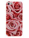 Teste padrão do diamante Olha PC Hard Case para iPhone 5/5S Rosa Vermelha
