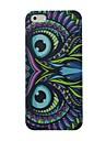 iPhone4/4S를위한 다채로운 올빼미 패턴 하드 케이스