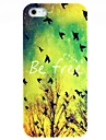 Vintage Bird & Tree Hard Case for iPhone 5/5S