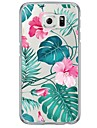 Case For Samsung Galaxy Samsung Galaxy S7 Edge Ultra-thin / Translucent Back Cover Flower Soft TPU for S7 edge / S7 / S6 edge plus