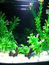 Оформление аквариума Водное растение Нетоксично и без вкуса