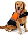 Коты Собаки Дождевик Жилет Спасательные жилеты Одежда для собак Милые Спорт Однотонный Оранжевый Зеленый