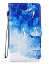 Case For Samsung Galaxy J5 (2017) J3 (2017) Card Holder Wallet with Stand Flip Pattern Full Body Cases Animal Hard PU Leather for J5