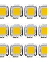 20W COB 1600LM 3000-3200K/6000-6200K Warm White/White Light LED Chip DC30-36V 12Pcs